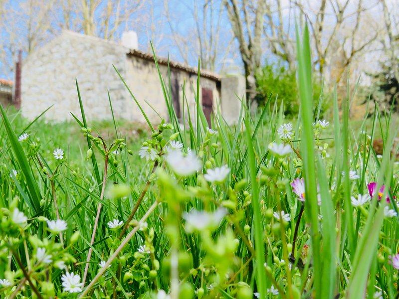 Oasis of peace, location de vacances à Bonorva