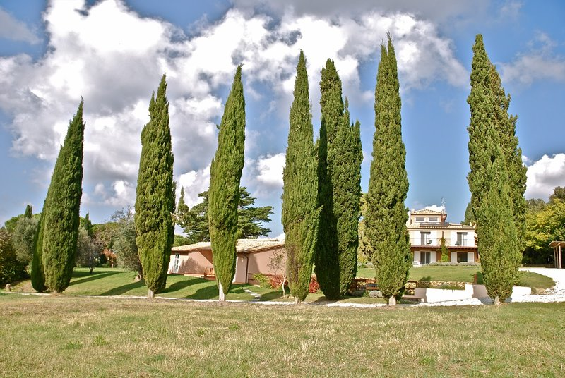 Villa Bolgheri, vacation rental in Bibbona