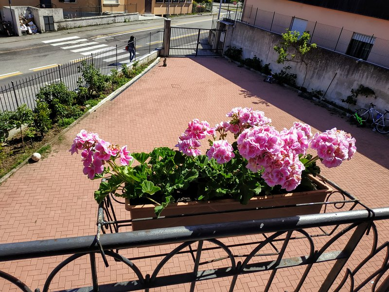 Casa Marina, holiday rental in Pallanza