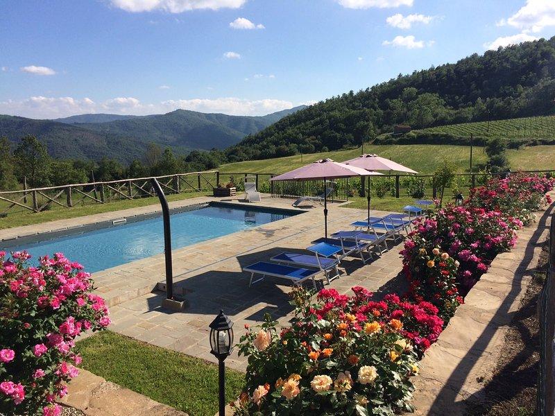 Villa Fiordaliso, holiday rental in Teverina