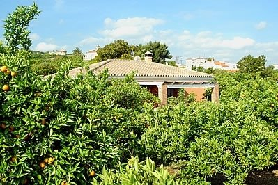 Coin Villa Sleeps 6 with Pool - 5049880, holiday rental in Coin
