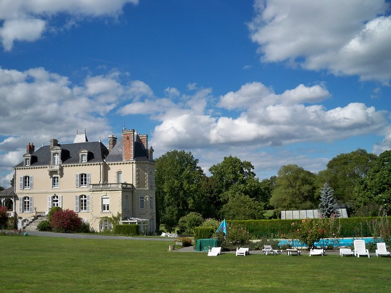 Chateau Vary & Loire Valley Cottages, holiday rental in Jarze