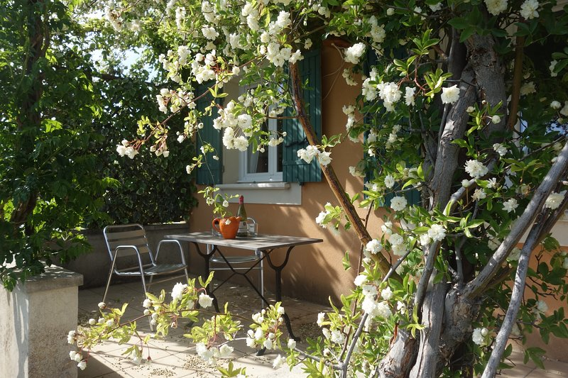 PLEIN SUD - COSY APPARTEMENT ET TERRASSE, vacation rental in L'Isle-sur-la-Sorgue