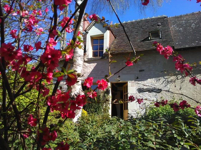 Location de vacances dans un gîte à la campagne proche de la Roche Posay, holiday rental in Charnizay