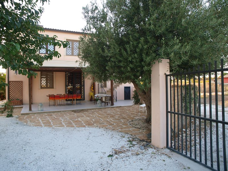 The Villa and the olive tree