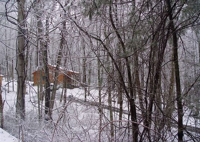 River Phoenix - 2BR/1BA Creekside Cabin w/WIFI, Fire Pit & Pet Friendly!, holiday rental in Warrensville