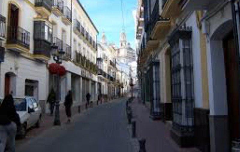PARAISO EN CASCO HISTORICO DE OLVERA, alquiler vacacional en Morón de la Frontera