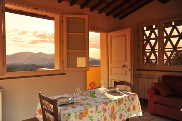 Il Limone, holiday rental in Capannori