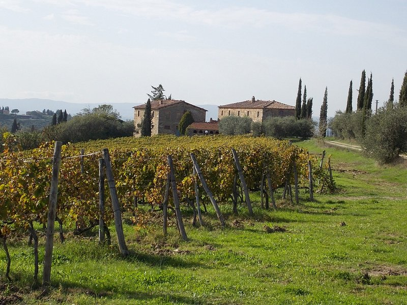 Visentini, holiday rental in Castellina In Chianti