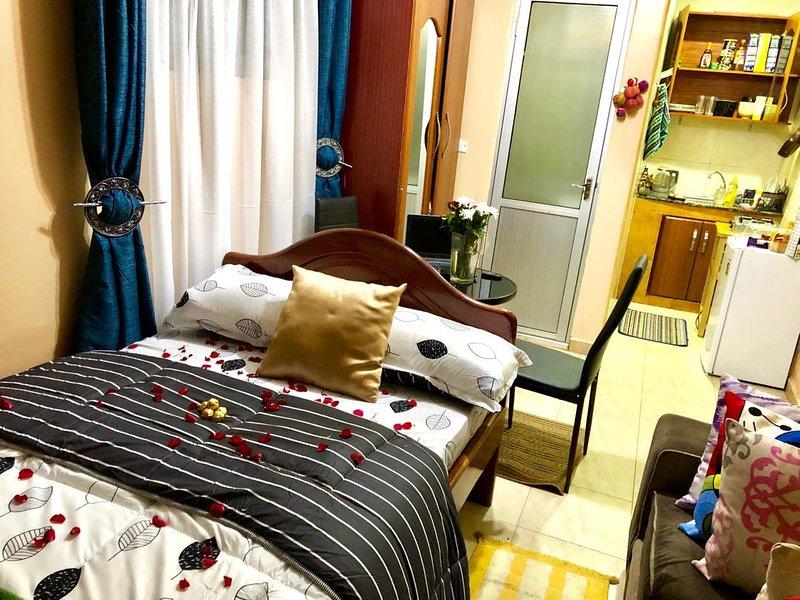 Cozy budget studio Apartment near US embassy Kampala, location de vacances à Kampala