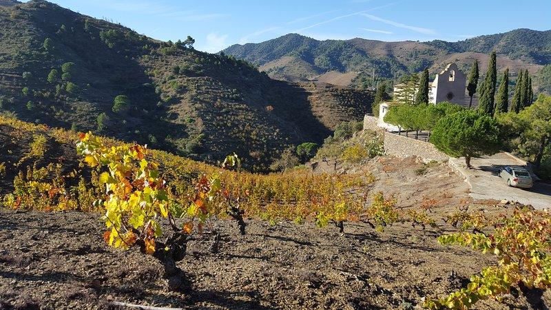 Beautiful Wine Landscape from Porrera, Priorat.