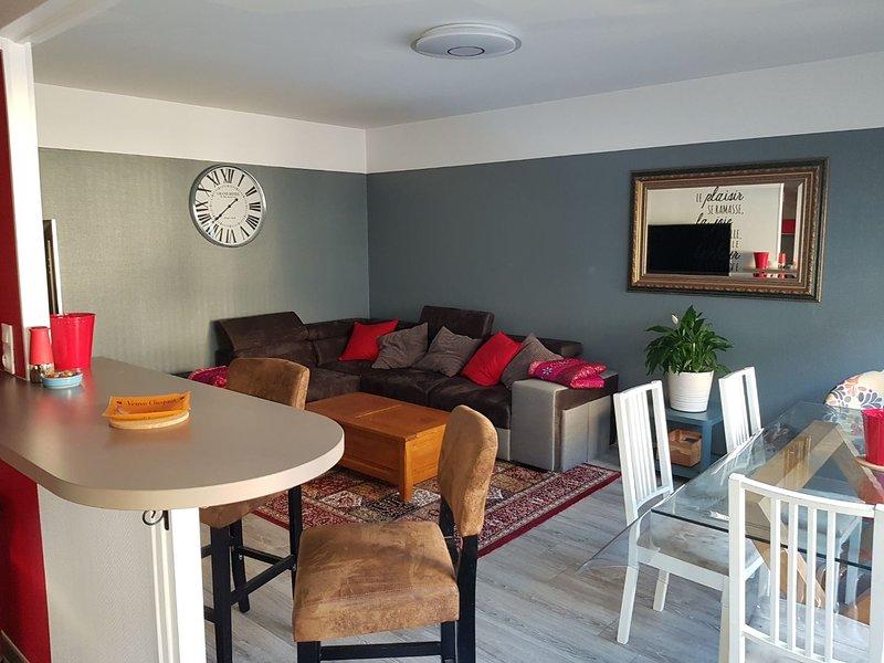 Proche centre appartement luxe trois chambres + Parking gratuit, location de vacances à Chigny les Roses