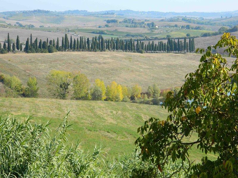 Spazzavento_Castellina in Chianti_25