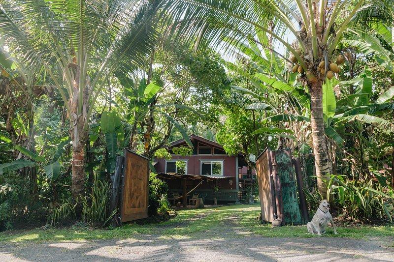 Tropical Tree Guest House near Pahoa Hawaii, alquiler vacacional en Kalapana