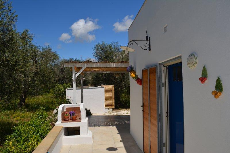 Monolocale tra gli ulivi, ad un km dal mare, casa vacanza a Vignacastrisi