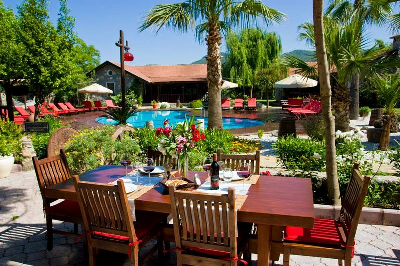 Enjoy lunch in our terrace and bar area overlooking the pool.