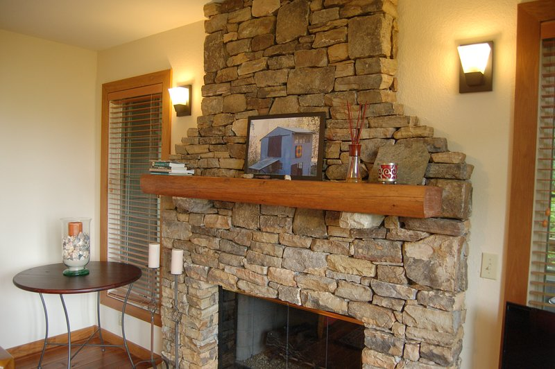 Gas Insert Fireplace offers Warmth in the Cold Months