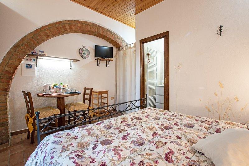 Agriturismo IL PODERUCCIO monolocale, holiday rental in Bagno Vignoni