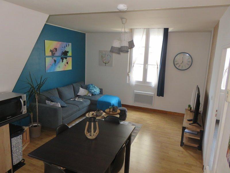 Grand appartement chaleureux, vacation rental in La Chapelle-Gaudin