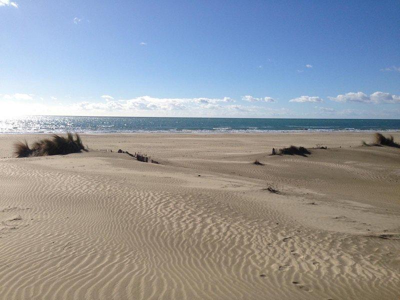 Wild beach of Villeneuve les Maguelonne near Palavas winter.