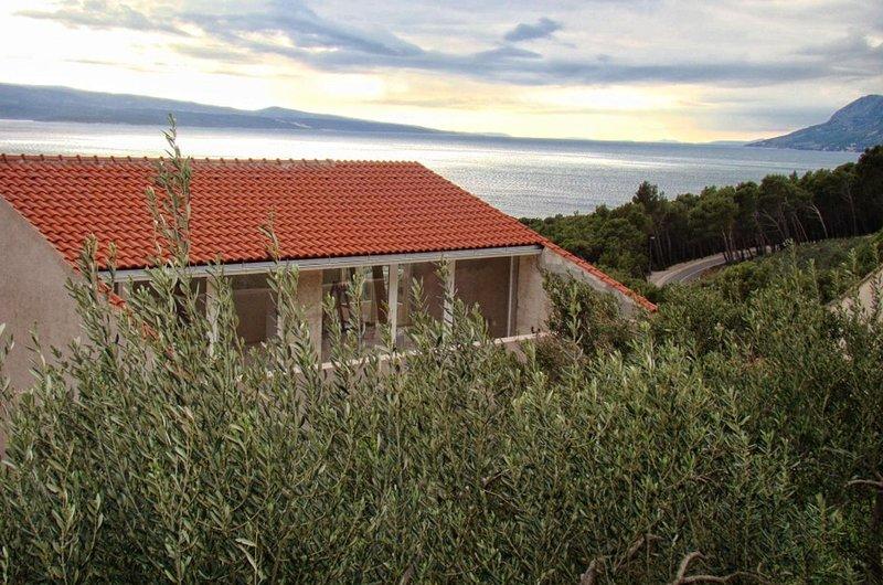 Studio flat Brela, Makarska (AS-16596-a), vacation rental in Brela
