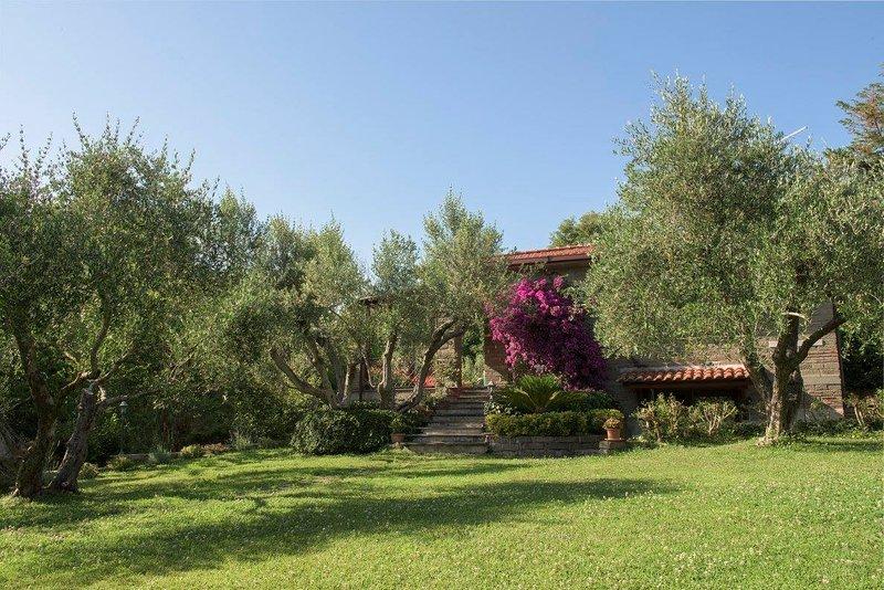 Gli Ulivi, vacation rental in Monterosi