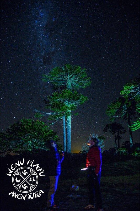 Astronomie Mapuche