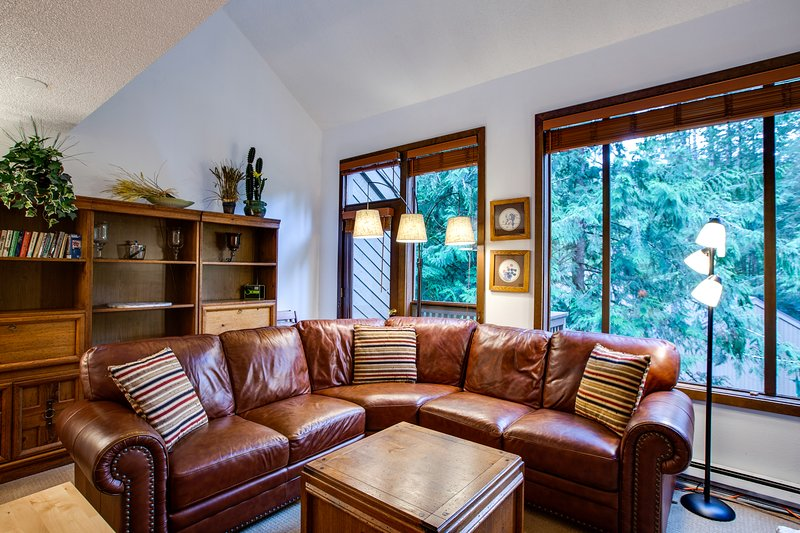 Snowater Family Condo #31-FIREPLACE, WIFI*, DISHWASHER, WASHER/DRYER, DVD, SLP-4, vacation rental in Glacier