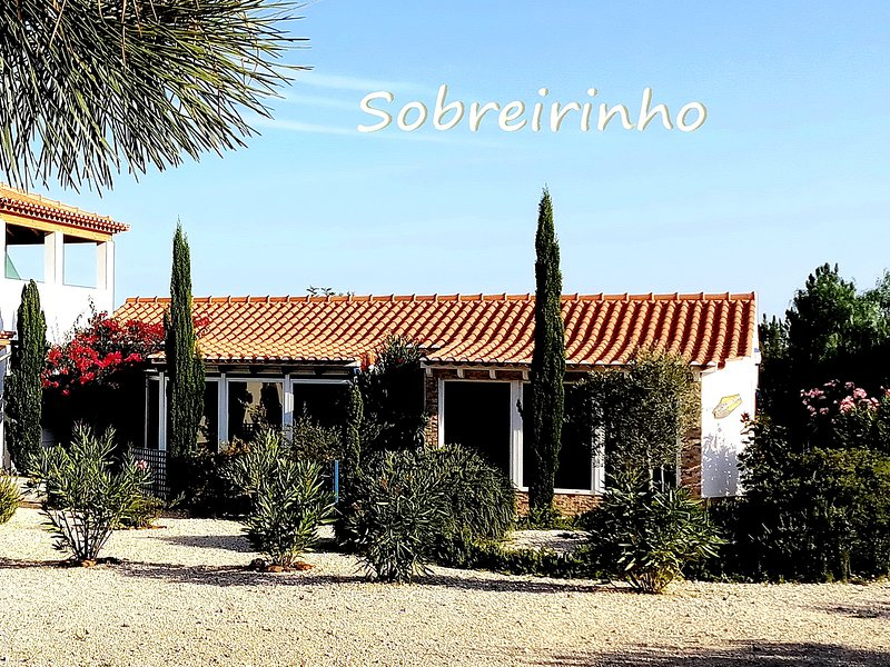 SOBREIRINHO - Spacious Family House in Plain Nature with Pool and Pine Forest, vacation rental in Odemira