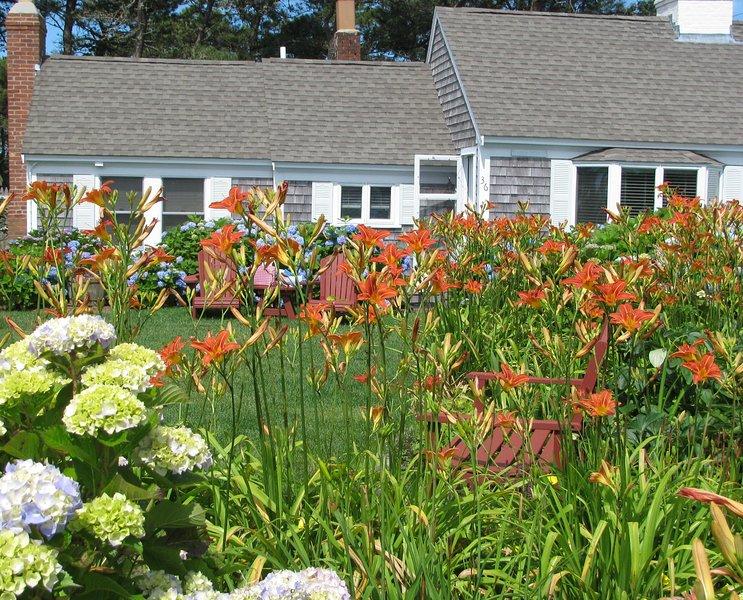 Cottage & summer garden