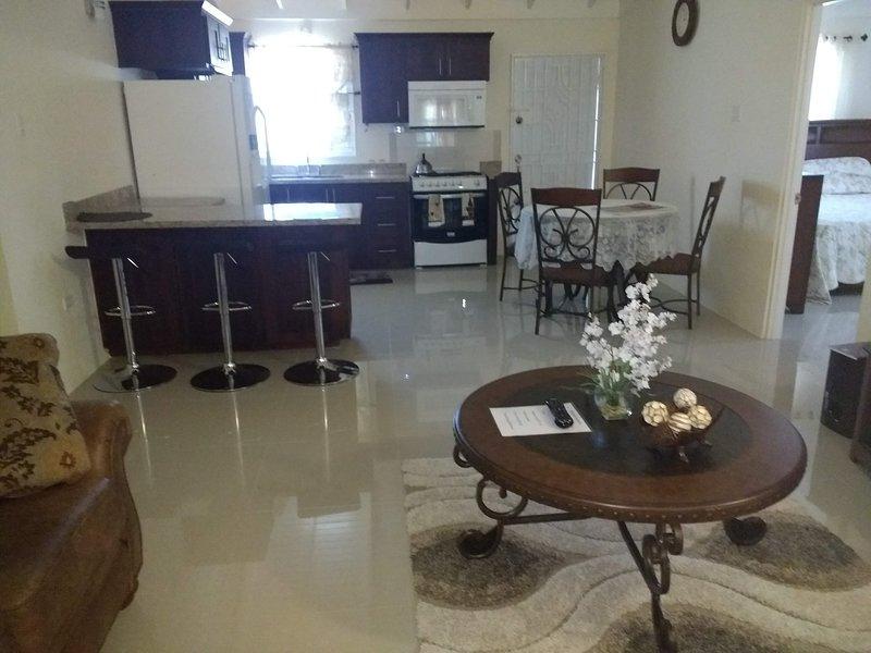 LIVING ROOM /DINING ROOM/KITCHEN