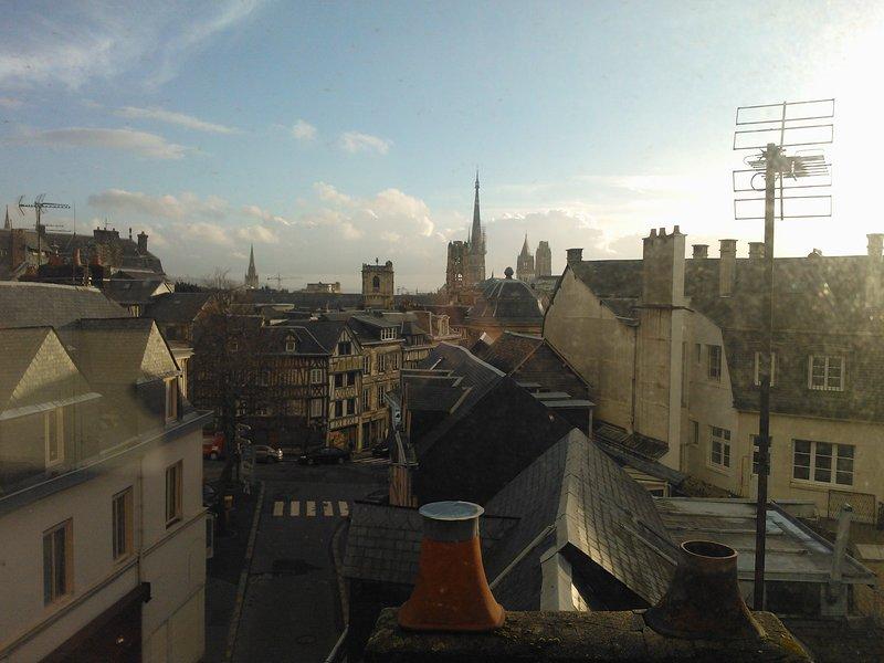 Quartier des musées, à 2 minutes de la gare des trains, plein centre de Rouen, holiday rental in Mont-Saint-Aignan