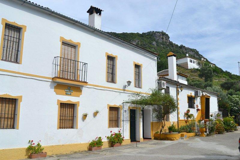Spacious house with mountain view, alquiler vacacional en El Bosque