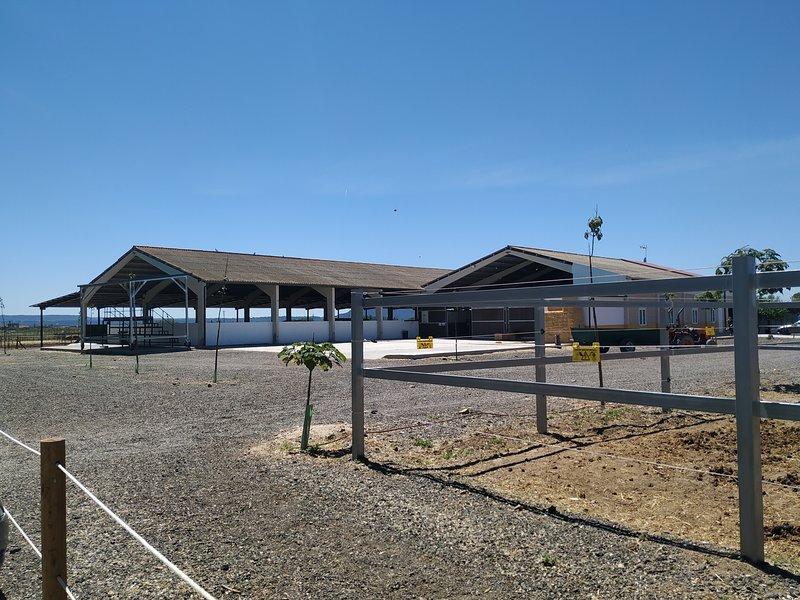 Centro Hipico