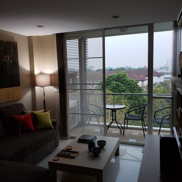 Attractive Luxury One Bedroom Condo Peaks