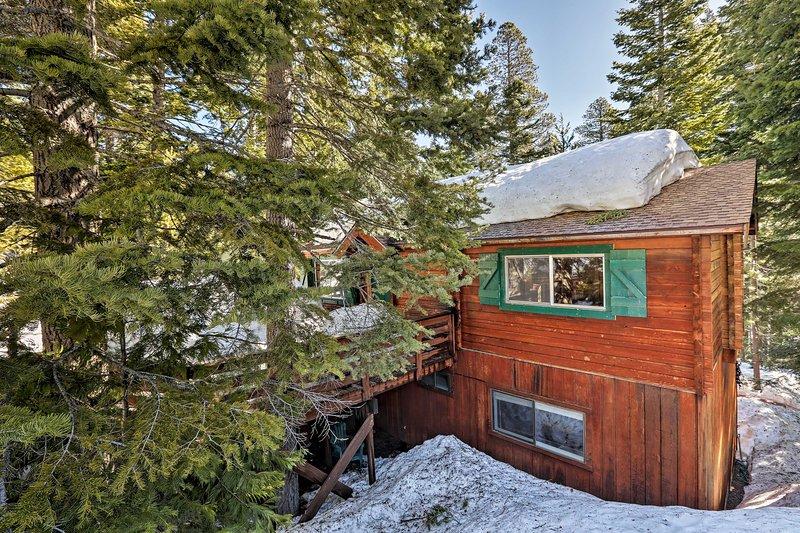 Du kommer att älska din tid i denna high-end California Mountain stuga.