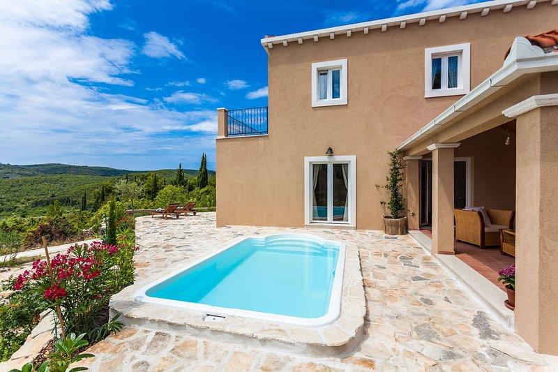 Villa Florosa with Swimming Pool, vacation rental in Zrnovska Banja
