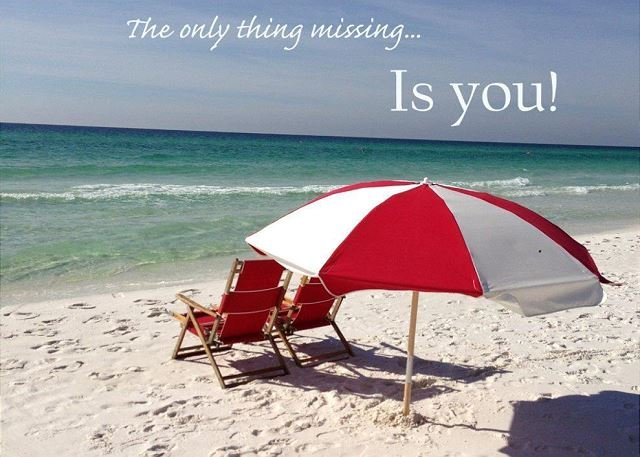 The Only Thing Missing Is You!