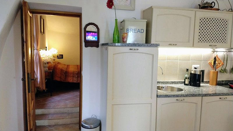 Charming apartment with beautiful view on Lake Como and large, private terrace, holiday rental in Sormano