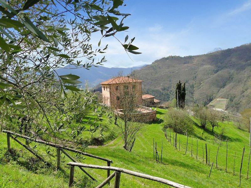 New! Villa, private pool, stunning views, 6 bedrooms, walk facilities WIFI – semesterbostad i Fosciandora