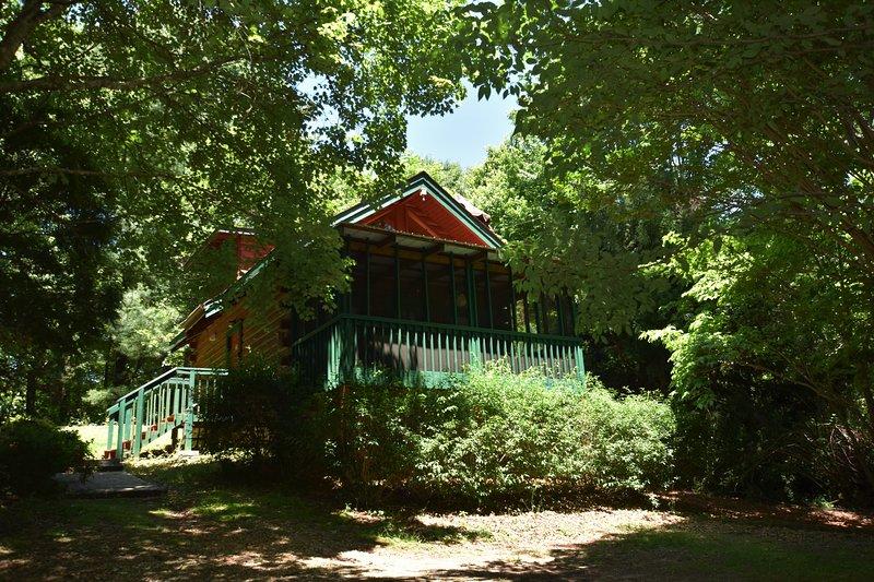 Mountain Tranquility Cabin, Helen, GA, WIFI, Hot tub!, holiday rental in Helen