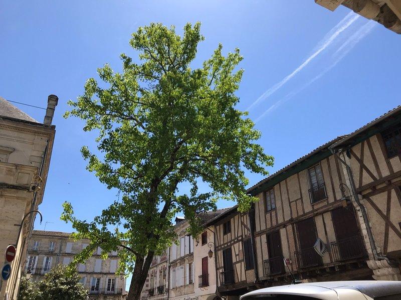 Typical l Sainte Foy architecture