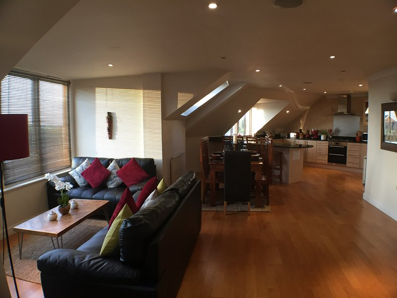 City Centre Penthouse - Parking, Wifi, sleeps 6, holiday rental in Exeter