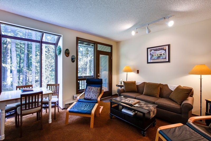 Snowater Family Condo #28-FIREPLACE, DISHWASHER, DVD, WIFI*, WASHER/DRYER, SLP-4, vacation rental in Glacier