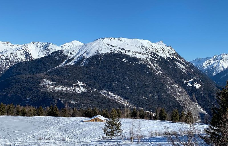 Chalet a La Bade Chamonix Les Houches, holiday rental in Les Houches