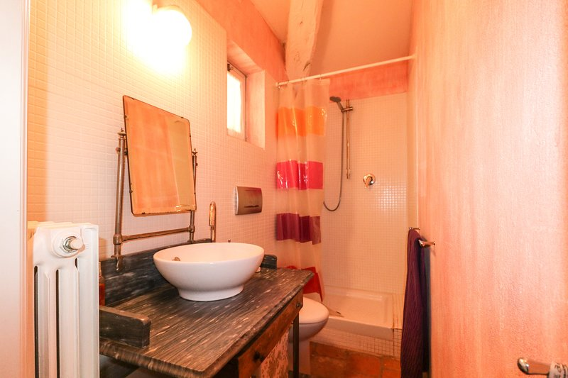 Een 3e badkamer, voorzien van een douche, wastafel en toilet