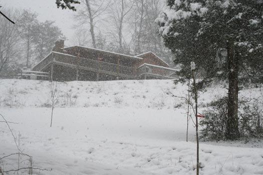 Vista invernal del loft del águila