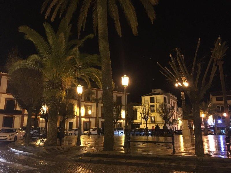 APARTAMENTO TURISTICO TOURIST HOUSE STA MARIA DE GRACIA, holiday rental in Carmona