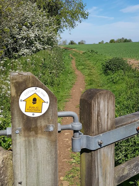 The Cotswolds Way - just behind The Barn