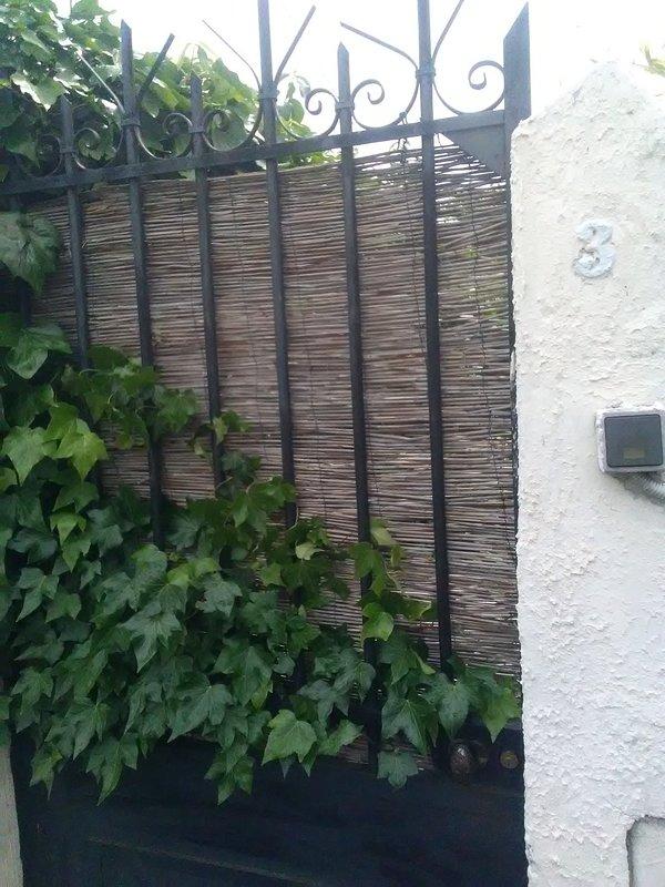 Gate overlooking the street David Siqueiros
